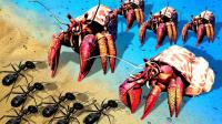 拟地下蚁国 解锁木蚁在海滩边建起巢穴面临新危险寄居蟹!