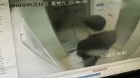男子电梯疯狂蹦跳 致电梯半路故障停运