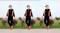 馨蕊百合广场舞 新潮动感《DJ玩腻》广场上最受欢迎的12步