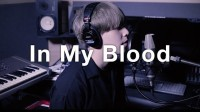 Shawn Mendes - In My Blood 翻唱视频