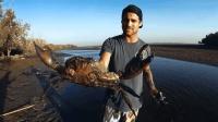 男子抓一只巨型螃蟹, 这样的生活才叫享受, 你难道不羡慕吗?