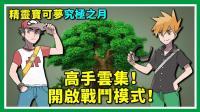 ★精灵宝可梦★铭刻阿罗拉的战斗历史! 高手云集的对战树! ★40★神奇宝贝★酷爱ZERO
