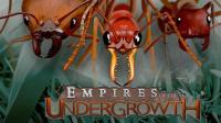 蚁后诞生, 打造地下蚂蚁帝国!