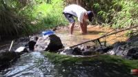 四哥大清早去到小山溪, 在溪水中手起手落, 他在做什么呢?