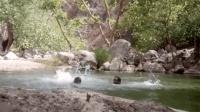 旱鸭子玩跳水 印度三男拍下自己溺亡全程