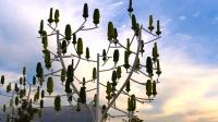 法国大爷发明一棵树, 一年能发电13500度, 种上一棵就不用交电费了