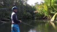 钓鱼: 竿抛的这么好, 不中几条大鱼都对不起他!