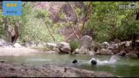 印度3男子深池塘游泳溺亡, 他们的手机意外录下整个过程