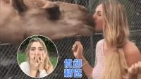 《优创精选》惊! 金发美女逛动物园遭骆驼强吻