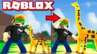小格解说 Roblox宠物庄园: 可爱狮子宝宝! 模拟农场变身疯狂动物城! 乐高小游戏