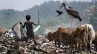 印度贫民的生活有多苦? 生活在垃圾堆里, 孩子和动物抢吃的