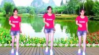 湖南灵迈广场舞《凤凰飞》2分钟舞曲32步基础鬼步舞原创
