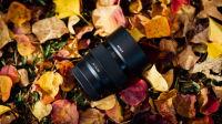远离这只镜头——索尼 FE 50mm f1.8