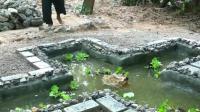 澳洲小哥  荒野求生 野外生存 生存哥 小鱼池建造