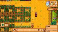 星露谷物语 第三季联机版 橙辰之歌 第12期 大鸡大利今晚吃鸡 深辰解说