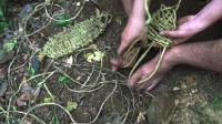 澳洲小哥  荒野求生 野外生存 生存哥 编织凉鞋