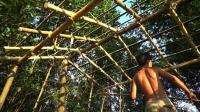澳洲小哥  荒野求生 野外生存 生存哥  建造房屋