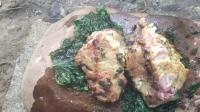 澳洲小哥  荒野求生 野外生存 生存哥 野外生存烹饪食物