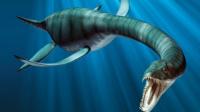 真是史前蛇颈龙?1977年日本捕获海怪之谜