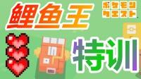 02★口袋精灵★宝可梦★探险寻宝★特训鲤鱼王