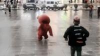 网红熊摔了一个大跟头, 看着都感觉疼啊