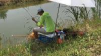 钓鱼: 小伙用2米4手竿钓鲫鱼, 一边钓一边喊累