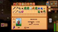星露谷物语 第三季联机版 橙辰之歌 第16期 夏季赚钱新技法 深辰解说