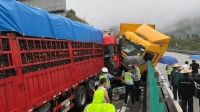 沙厦高速泉州段20车连环大追尾 致1死3伤