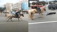 男子街头策马狂奔 不料被摔惨躺地一动不动