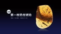 邢立达:人类第一次在琥珀里发现恐龙的遗骸