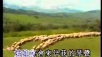 MTV:草原之夜