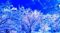 《初雪》1