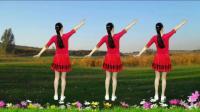 经典老歌广场舞《十送红军》16步简单易学!