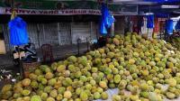 泰国街头出现迷你榴莲最大的仅有巴掌大, 那它里边有果肉吗?
