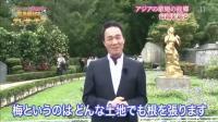 日本电视台报道上海邓丽君歌友会在台湾筠园的活动录像
