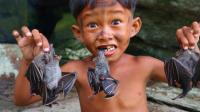 这个农村小男孩真勇敢, 进山捕捉食物, 看看这东东能吃吗?