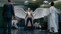 小伙天生一对大翅膀, 被人当成天使膜拜, 回头率100%!