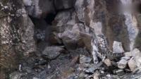 旋角山羊在陡峭悬崖上打架, 雪豹想捕捉却望而止步
