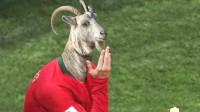 C罗帽子戏法!葡萄牙3-3西班牙-PAssionAck