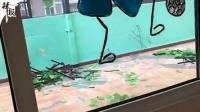 【整点资讯】幼儿园遭弹珠袭击/最甜女主播赴俄/男子开车窗撸狮子