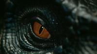 内地票房:龙来了!《侏罗纪世界2》大破7亿!