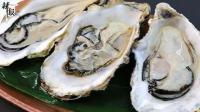 警示通报!污染牡蛎销往中国