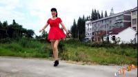 鬼步舞《不做你幸福的玫瑰》轩宝也来跟跳 简单易学 麦芽广场舞