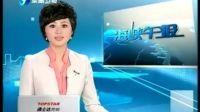 东南卫视 海峡午报20100326-民进党对ECFA辩论预设门槛 蓝营批蔡英文推三阻四