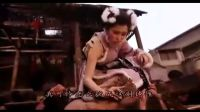 【HYL】香港经典动作片【飞狐外传】国语版