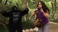 恶作剧: 游客动物园内拍照合影, 扭头发现猩猩在身旁龇牙被吓飞, 搞笑