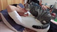 年纪轻轻的妹子就承受了不该承受的体重, 一头公猫就这样趴了上去
