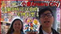 【旅行喳#4.5】福冈附近的宅物天堂超好逛! 狂抽龙珠超一番赏! 《Aruaru City》