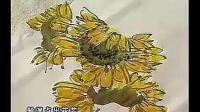 国画--跟徐湛老师学花鸟画 第38章    向日葵的画法