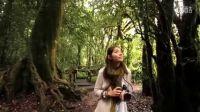 [NY中文网出品中文字幕]泰国旅游宣传短片聆听阳光Hearing The Sunshine